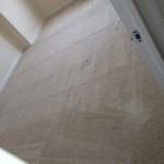 Olympia-Carpet-Clean-room