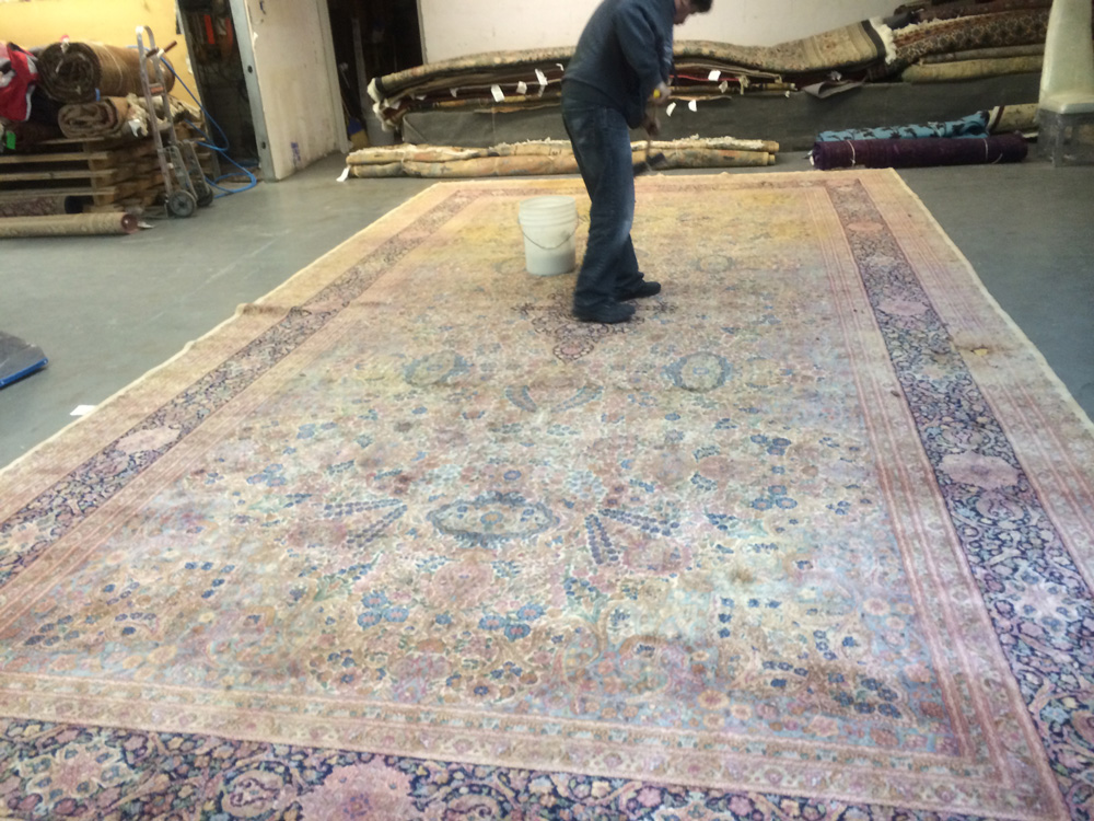 ... Carpet Cleaning Olympia Olympia Professional Rug Cleaning ...