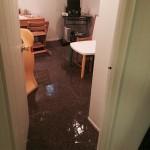 Olympia-office-room-flood-damage-repair
