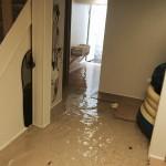 Olympiahome-flood-damage-repair