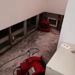 Olympiawater-damage-repair-equipment