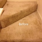 Stairs-Carpet-Cleaning-Olympia-A