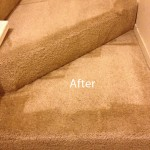 Stairs-Carpet-Cleaning-Olympia-B